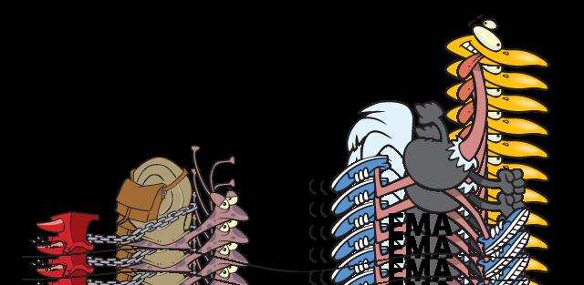 Полный австрало-питек! В следуещем году Петуха будем кушать улиток!